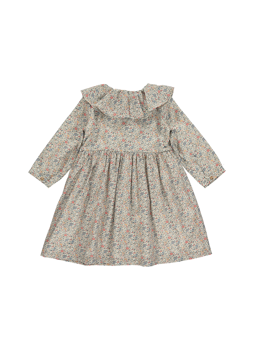 Dorothy Liberty Print Dress with Frill Collar